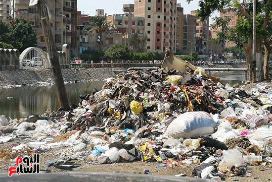 مشكلة القمامة وتراكمها بشوارع محافظة الغربية (11)