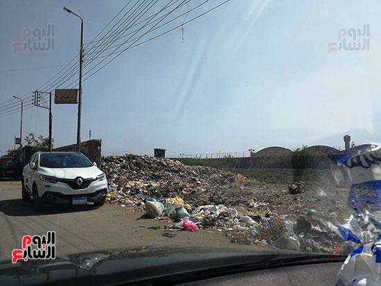 مشكلة القمامة وتراكمها بشوارع محافظة الغربية (9)