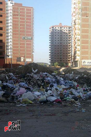 مشكلة القمامة وتراكمها بشوارع محافظة الغربية (14)