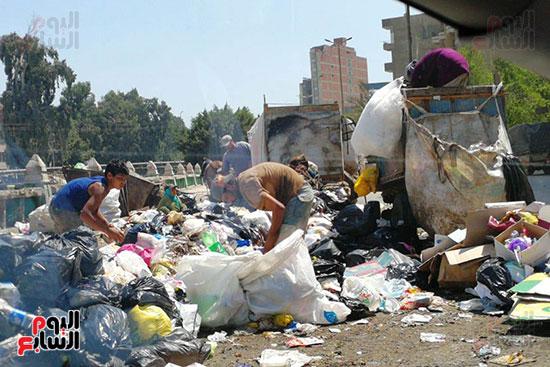 مشكلة القمامة وتراكمها بشوارع محافظة الغربية (2)