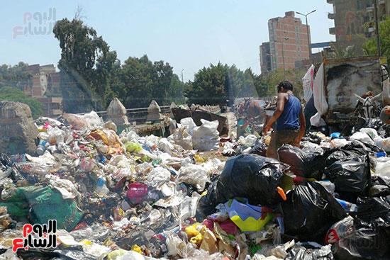 مشكلة القمامة وتراكمها بشوارع محافظة الغربية (12)