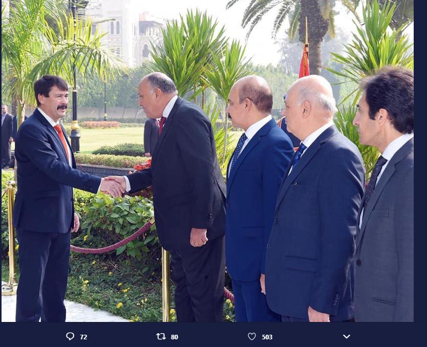 الرئيس عبدالفتاح السيسى، رئيس الجمهورية و الرئيس يانوش آدير (2)