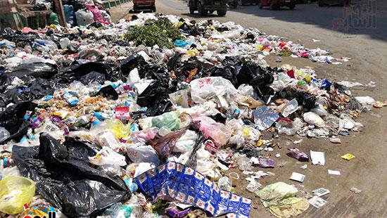مشكلة القمامة وتراكمها بشوارع محافظة الغربية (8)
