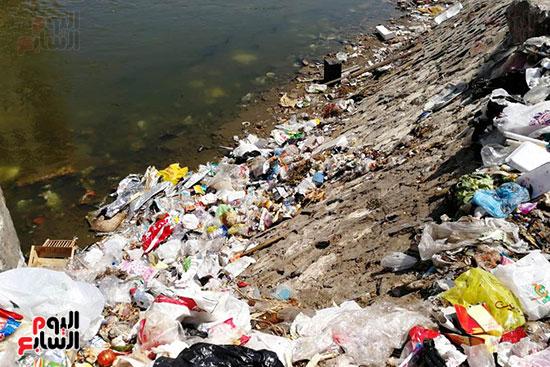 مشكلة القمامة وتراكمها بشوارع محافظة الغربية (5)