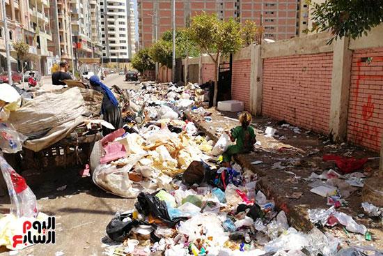 مشكلة القمامة وتراكمها بشوارع محافظة الغربية (4)