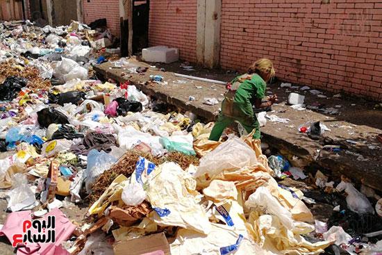 مشكلة القمامة وتراكمها بشوارع محافظة الغربية (7)