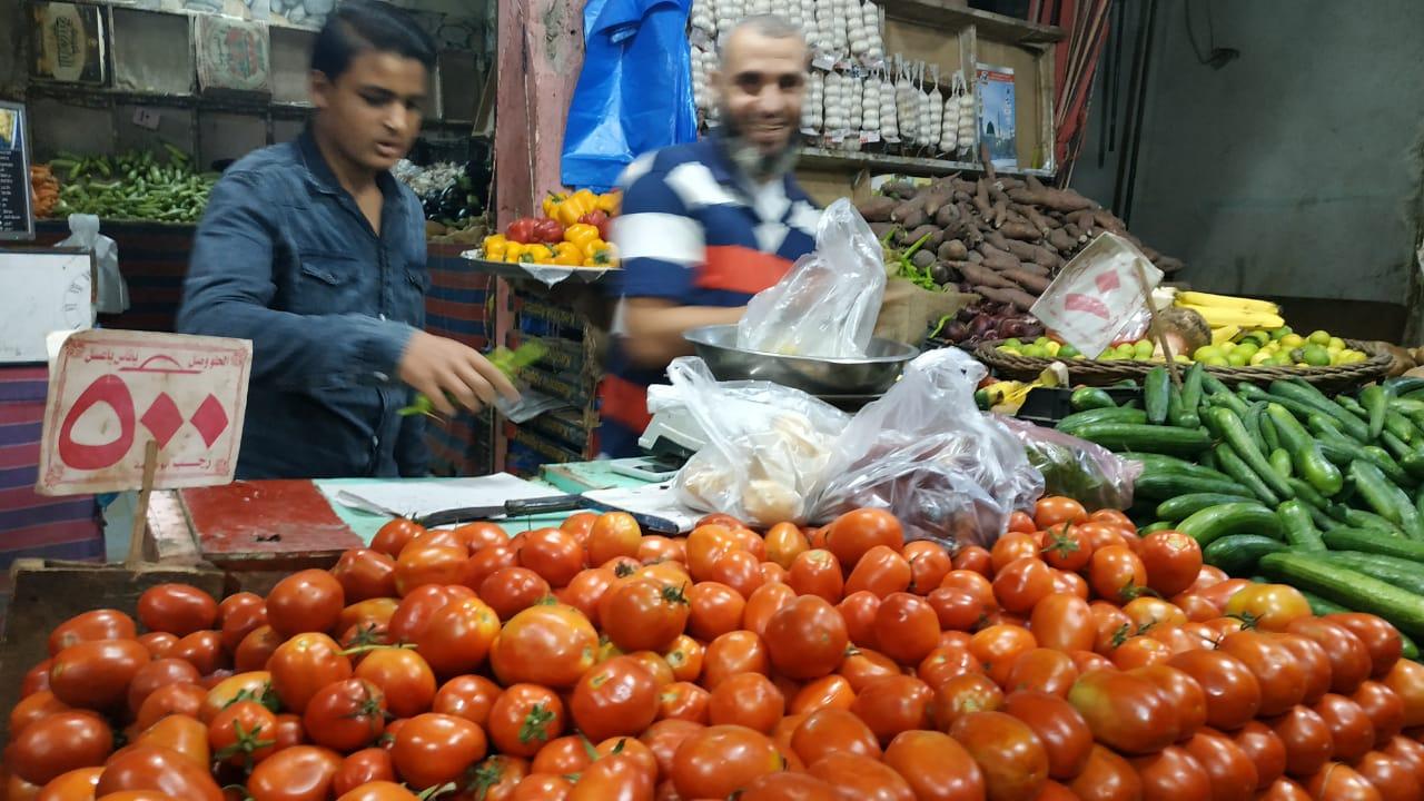 ثبات أسعار الخضروات والفاكهة بعد انخفاضها بأسواق مطروح (4)