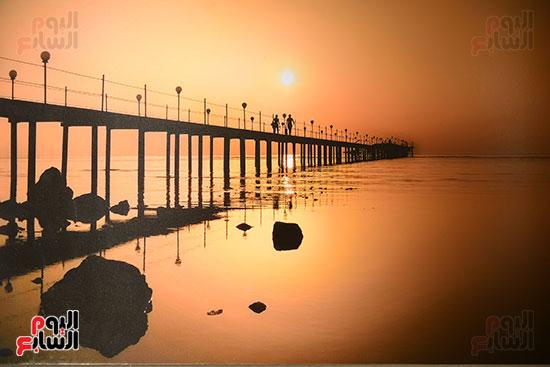 صالون النيل للتصوير الضوئى   (29)