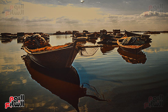 صالون النيل للتصوير الضوئى   (34)