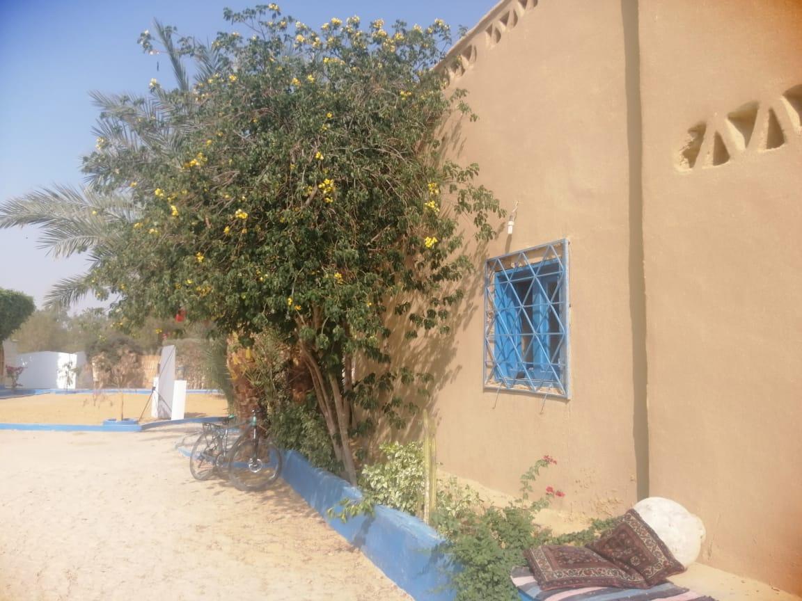 متحف الفنون والكاريكاتير بقرية تونس بالفيوم (1)
