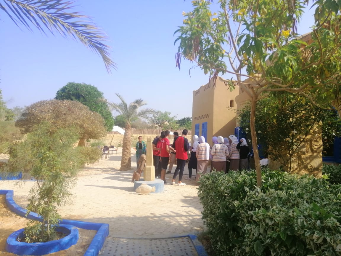 متحف الفنون والكاريكاتير بقرية تونس بالفيوم (4)