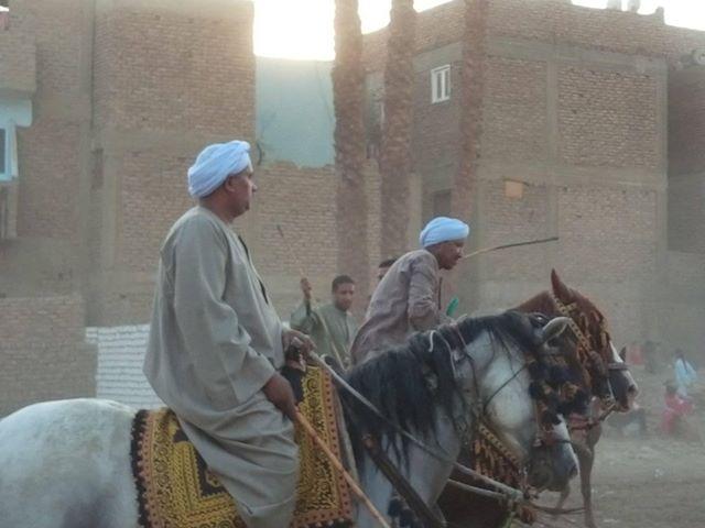 سباقات الخيول في قري محافظة الأقصر إحتفالات بالمولد النبوي الشريف (4)