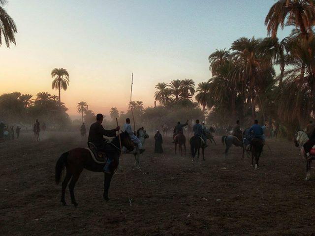 سباقات الخيول في قري محافظة الأقصر إحتفالات بالمولد النبوي الشريف (1)