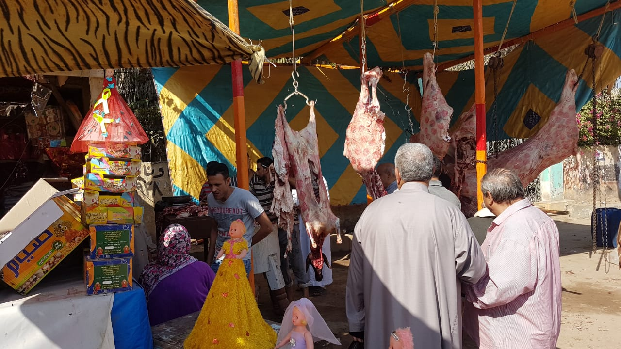 توفير اللحوم بأسعار مخفضة بكفرالشيخ (3)