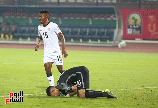 جنوب أفريقيا وزامبيا  (7)