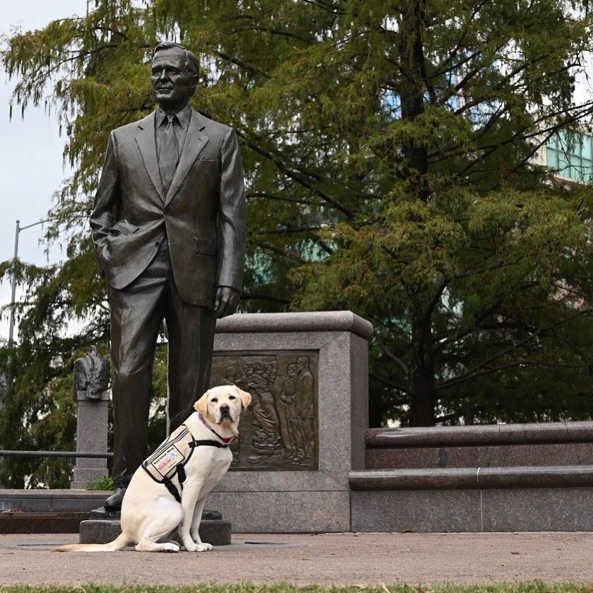 سولى بوش وتمثال الرئيس الراحل