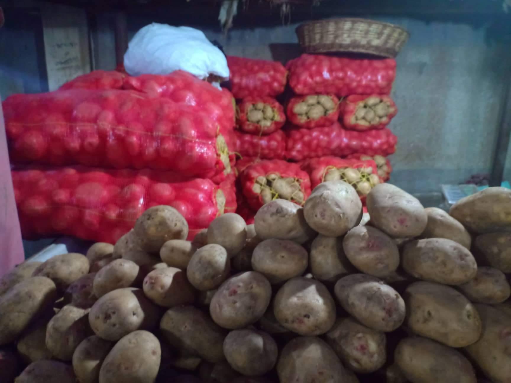 الخضروات بأسواق القليوبية بعد انخفاضها (2)