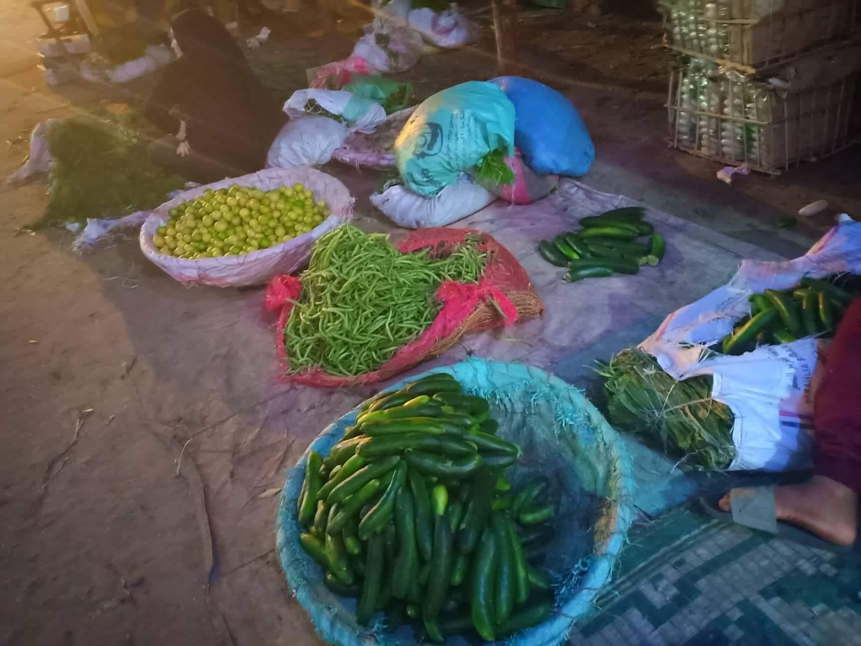 الخضروات بأسواق القليوبية بعد انخفاضها (3)