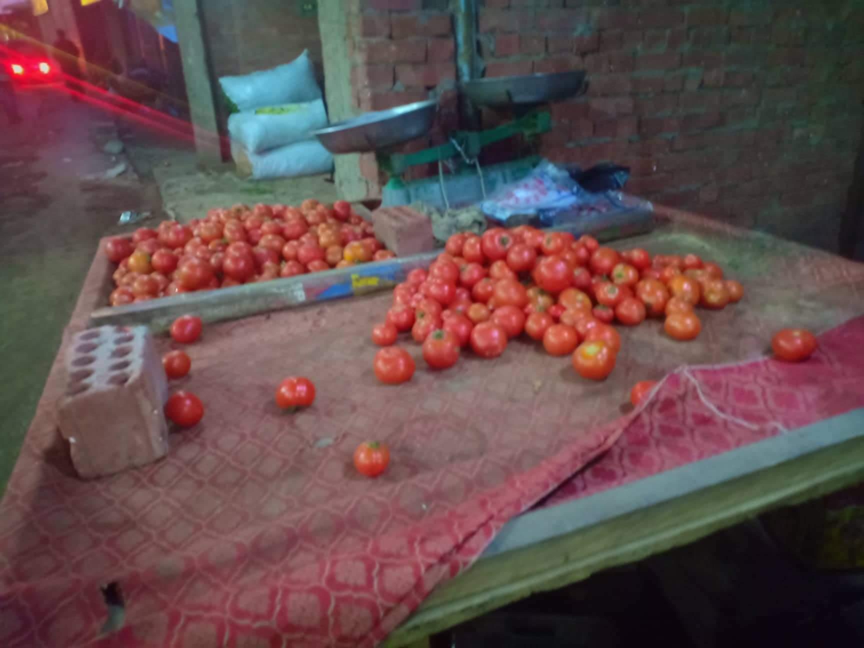 الخضروات بأسواق القليوبية بعد انخفاضها (1)