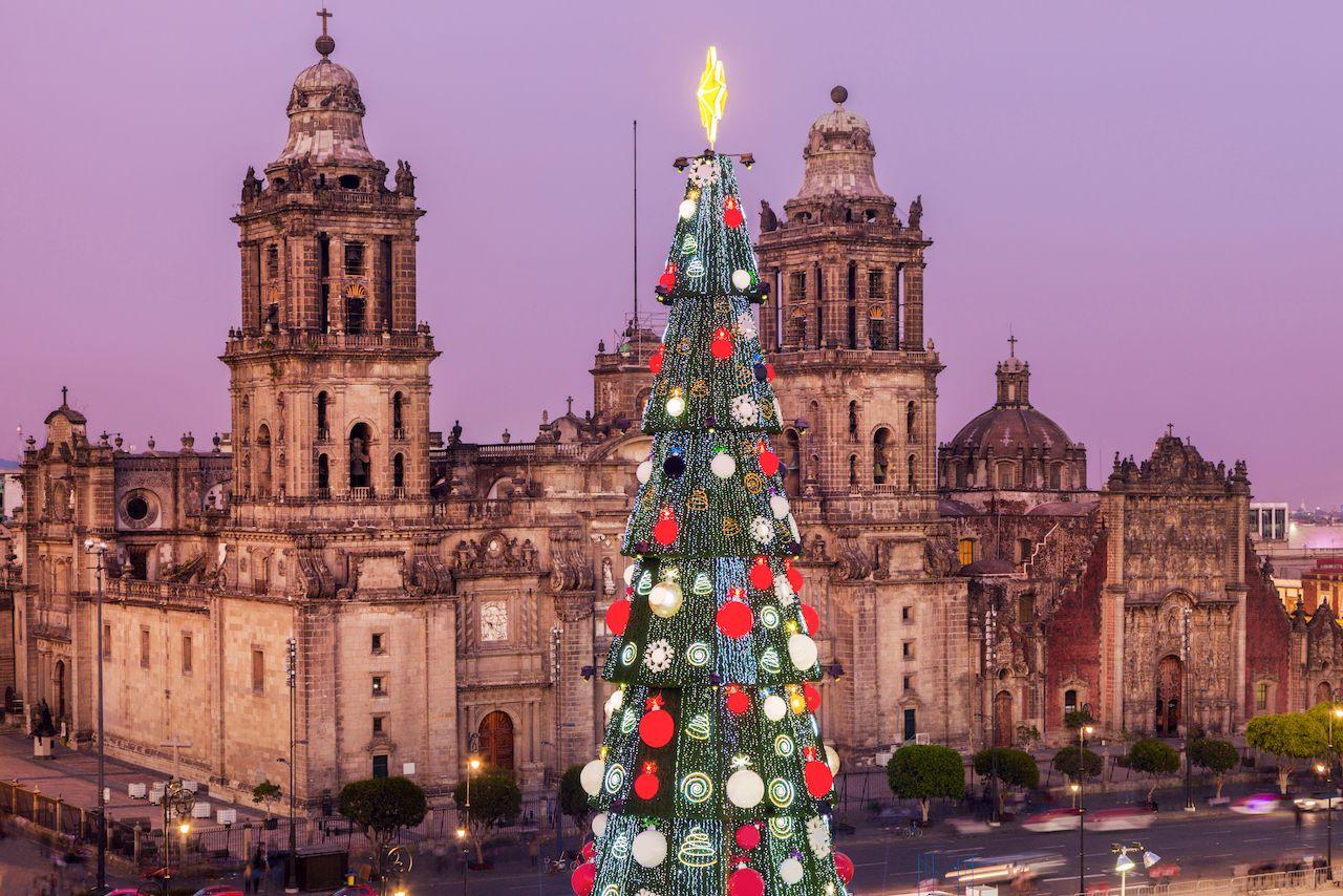 1. شجرة عيد الميلاد Zócalo