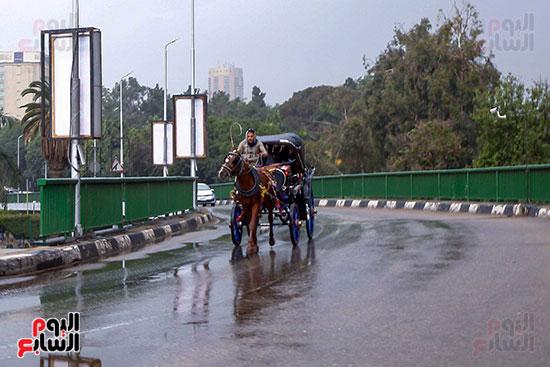 أمطار على القاهرة والجيزة (2)