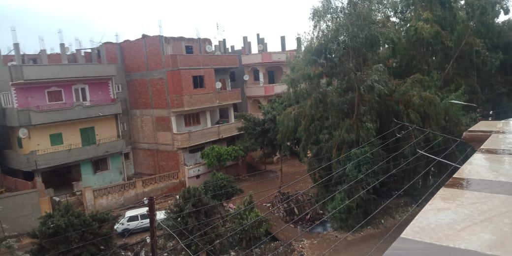 أمطار ورياح شديدة تضرب مدن محافظة القليوبية (1)