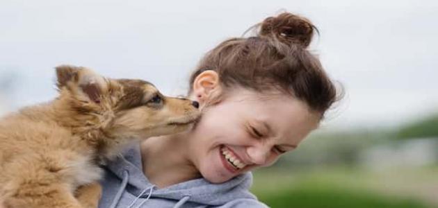 فيروس داء الكلب