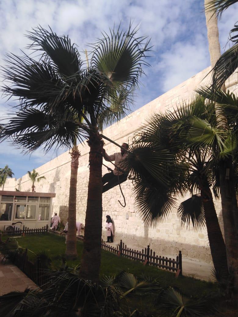 العمل بحدائق القلعة
