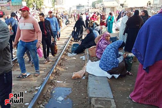 سوق شبين القناطر (9)