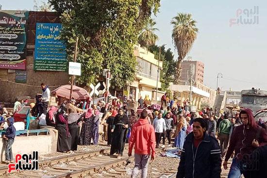 سوق شبين القناطر (1)