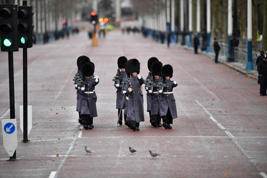 يمشي-الحمام-على-طول-المركز-التجاري-أمام-حارس-الملكة-خارج-قصر-باكنغهام-قبل-افتتاح-البرلمان-في-لندن