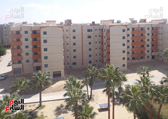إنجازات جهاز تعمير سيناء على أرض الفيروز (15)