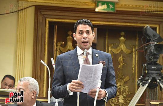 مجلس النواب (21)