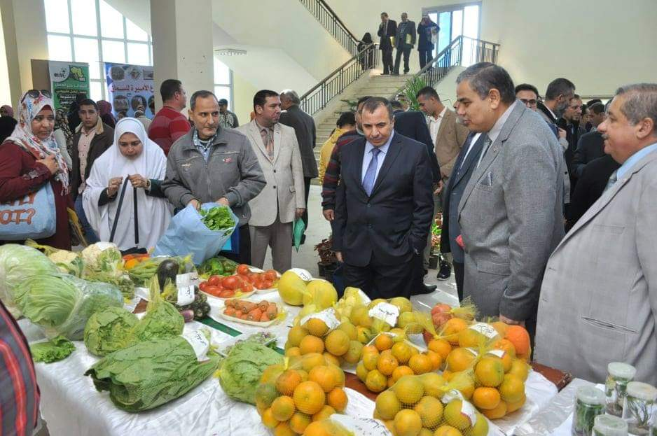 احتفالات زراعة كفر الشيخ (4)