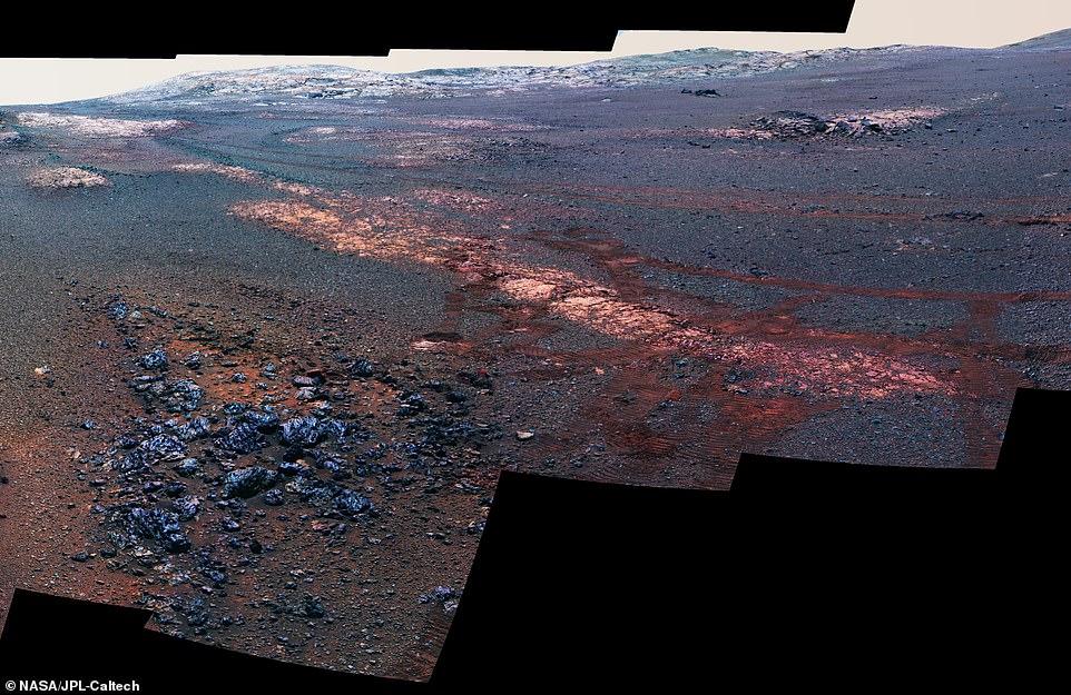 مستكشف المريخ 1