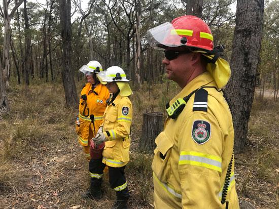 رجال الاطفاء وسط الغابات