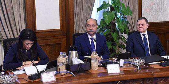 اجتماع مجلس الوزراء  (12)