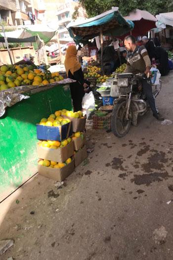 أسعار أصناف الخضر والفواكه (8)