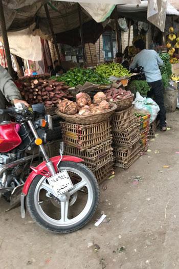أسعار أصناف الخضر والفواكه (6)