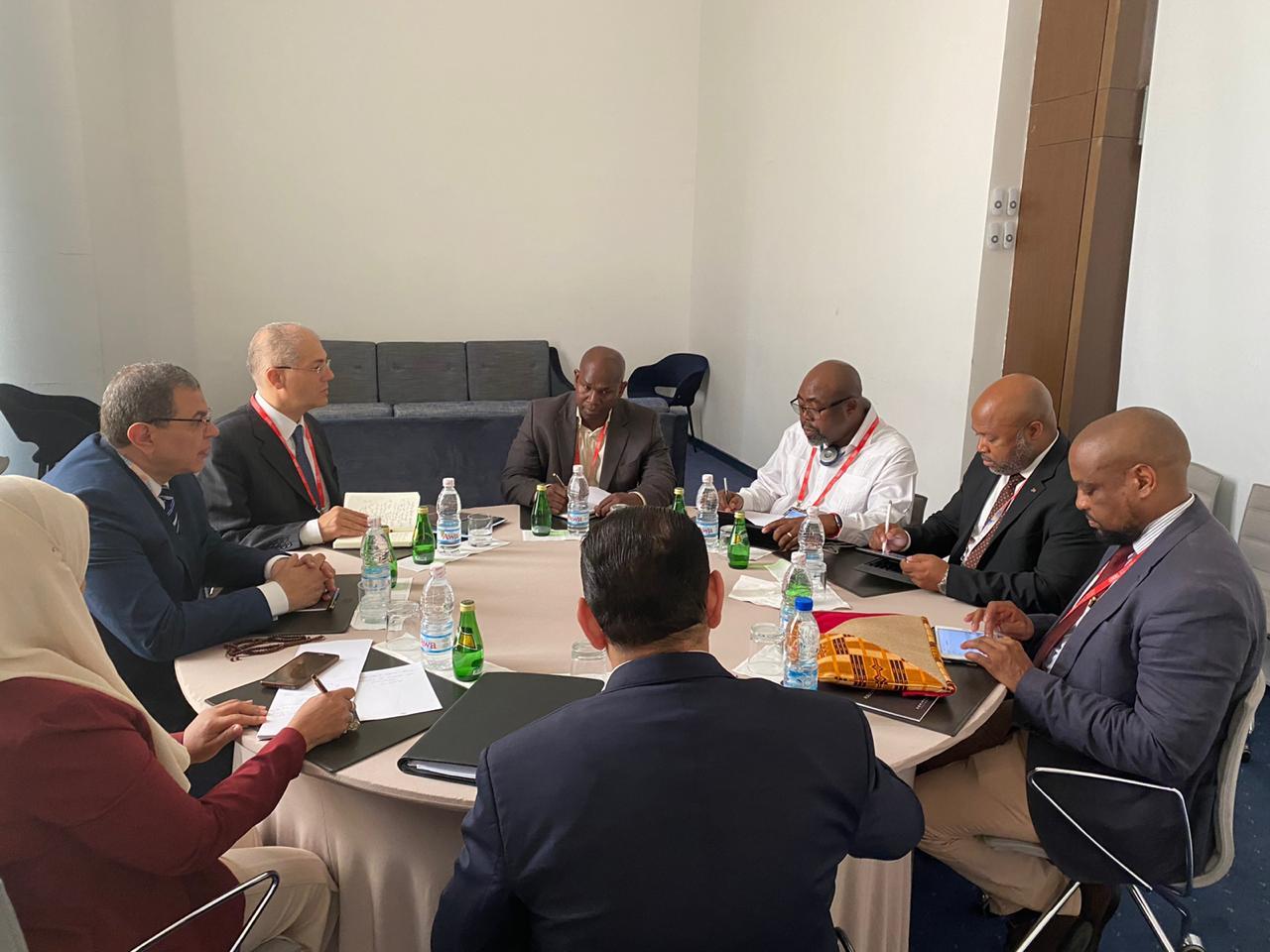 وزير القوى العاملة يبحث مع 3 وزراء عمل أفارقة التعاون فى مجالات العمل والتدريب والحوسبة (9)