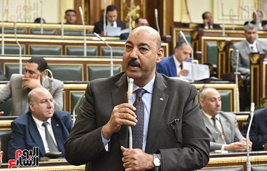 جانب من الجلسة العامة (3)