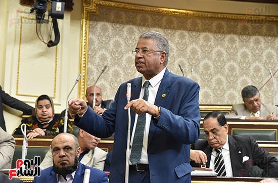 جانب من الجلسة العامة (14)