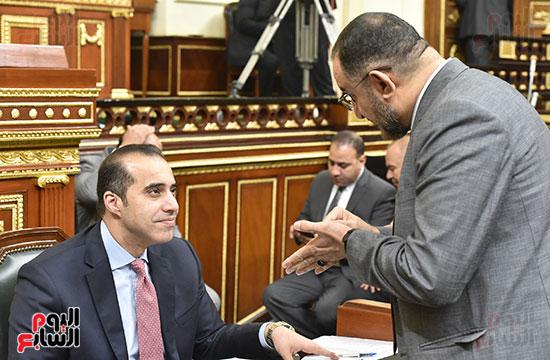 جانب من الجلسة العامة (1)