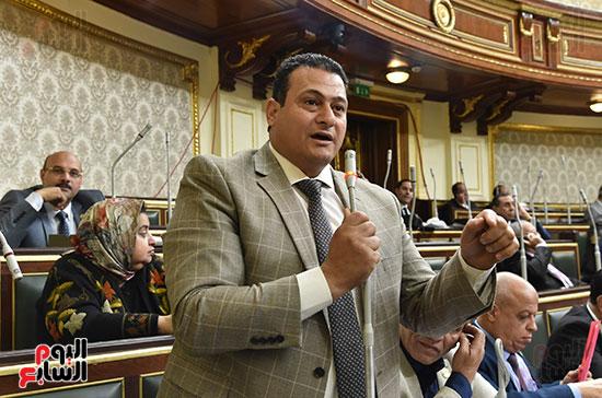 جانب من الجلسة العامة (13)