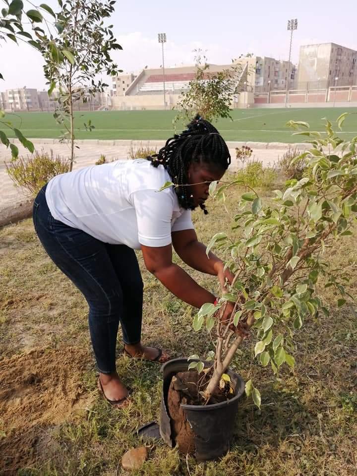 متطوعو الاتحاد الافريقى يزرعون 100 شجرة بمنتدى 15 مايو (26)