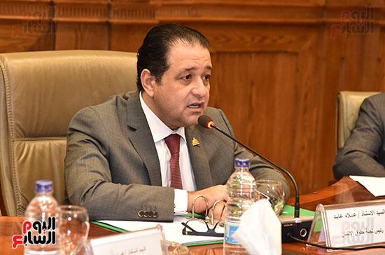 لجنة حقوق الإنسان (8)