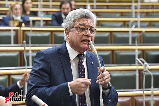 مجلس النواب (19)