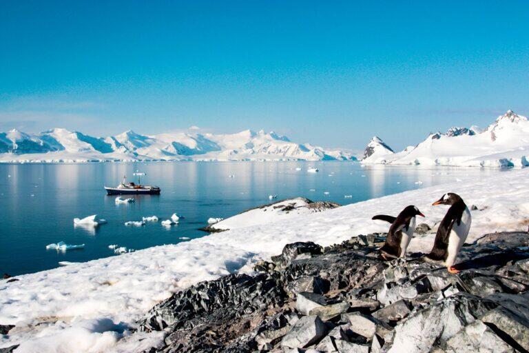 رحلة بحرية إلى القارة القطبية الجنوبية
