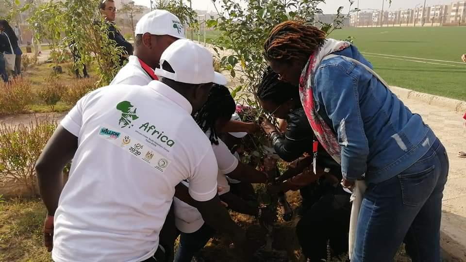 متطوعو الاتحاد الافريقى يزرعون 100 شجرة بمنتدى 15 مايو (21)