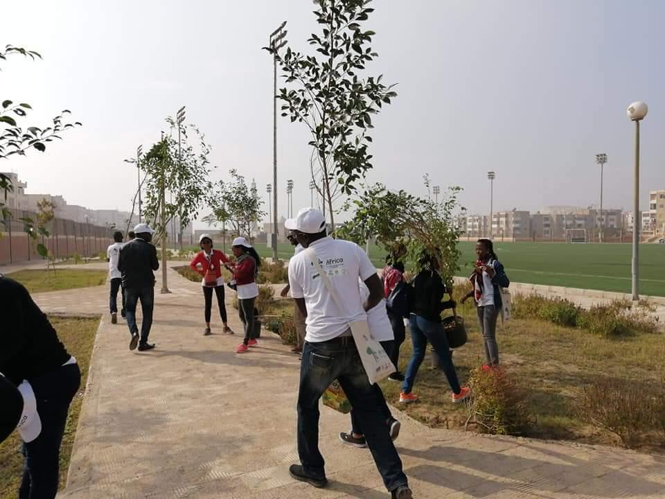 متطوعو الاتحاد الافريقى يزرعون 100 شجرة بمنتدى 15 مايو (16)